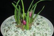 """Jautienos salotos  """"Iš po sniego kalasi pavasario žiedai"""""""