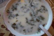 Rūgštynių sriuba su jūros lydeka