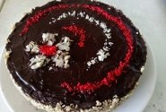 Margas tortukas mamai