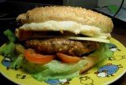 Avienos burgeris