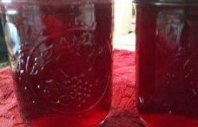 Vyšnių ir aviečių sirupas