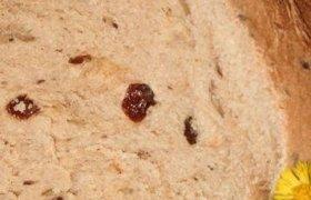 Cinamoninė duona su razinomis (kepta duonkepėje)
