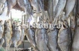 Vytinta (džiovinta) žuvis