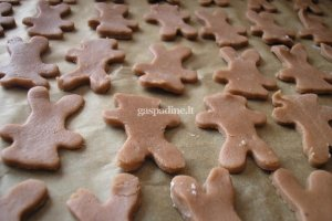 Kakaviniai sausainiai